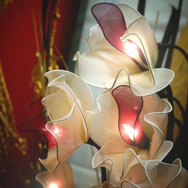 11月16日(水) アジアン雑貨バリタイは店休日です。