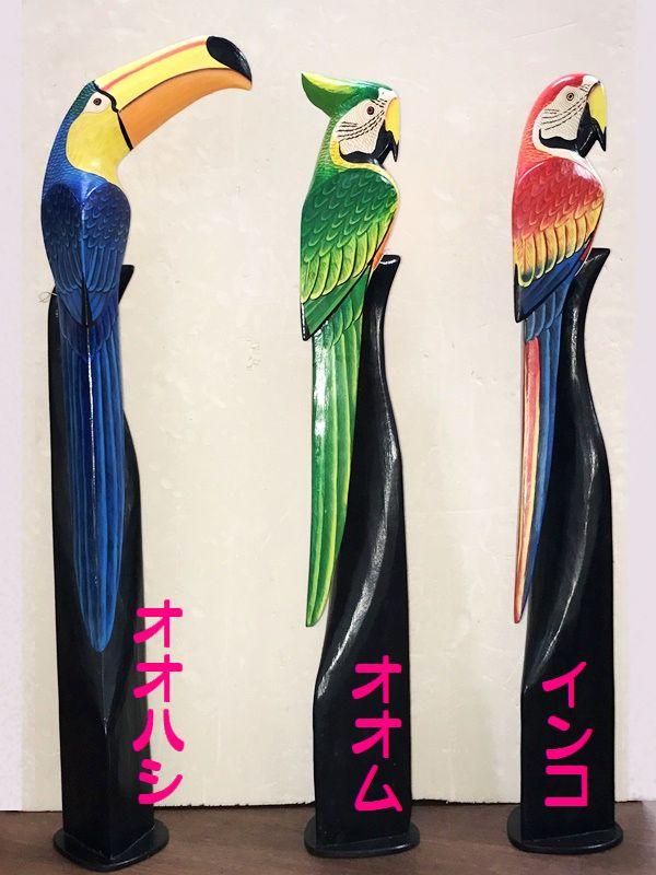 南国鳥/インコ