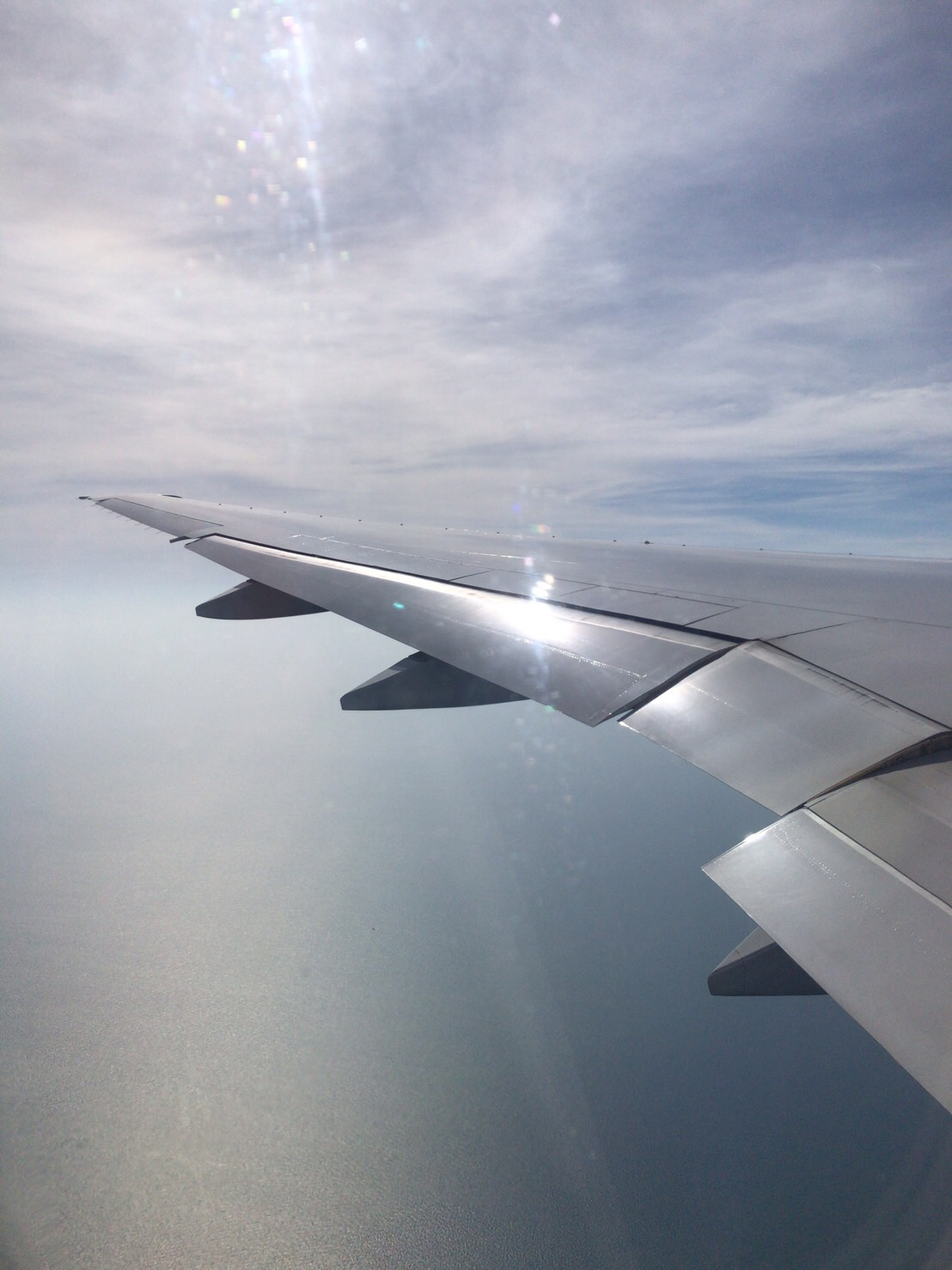 タイ航空 仕入れ