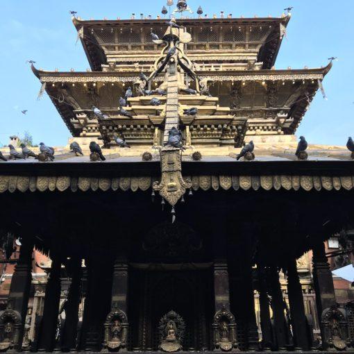 ゴールデンテンプル/ネパール
