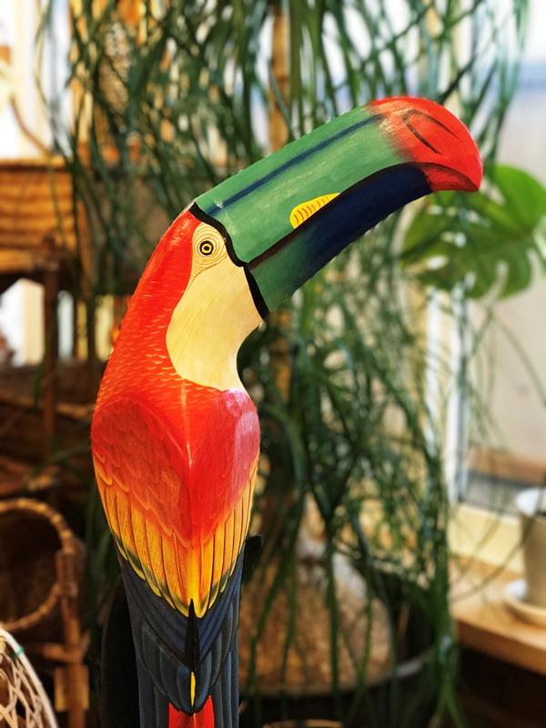 南国鳥/オオハシ